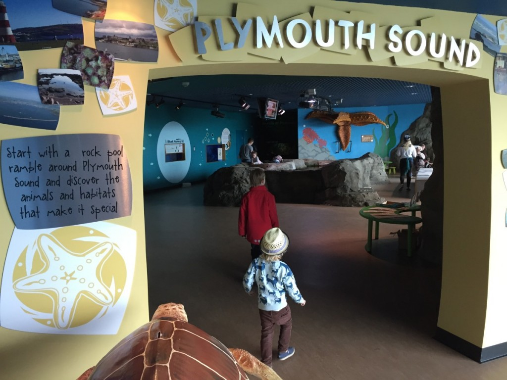 National Marine Aquarium, Plymouth, Devon - Copyright: www.globalmousetravels.com