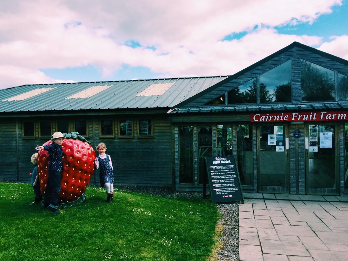 Cairnie's Fruit Farm, Fife, Scotland - Copyright: www.globalmousetravels.com