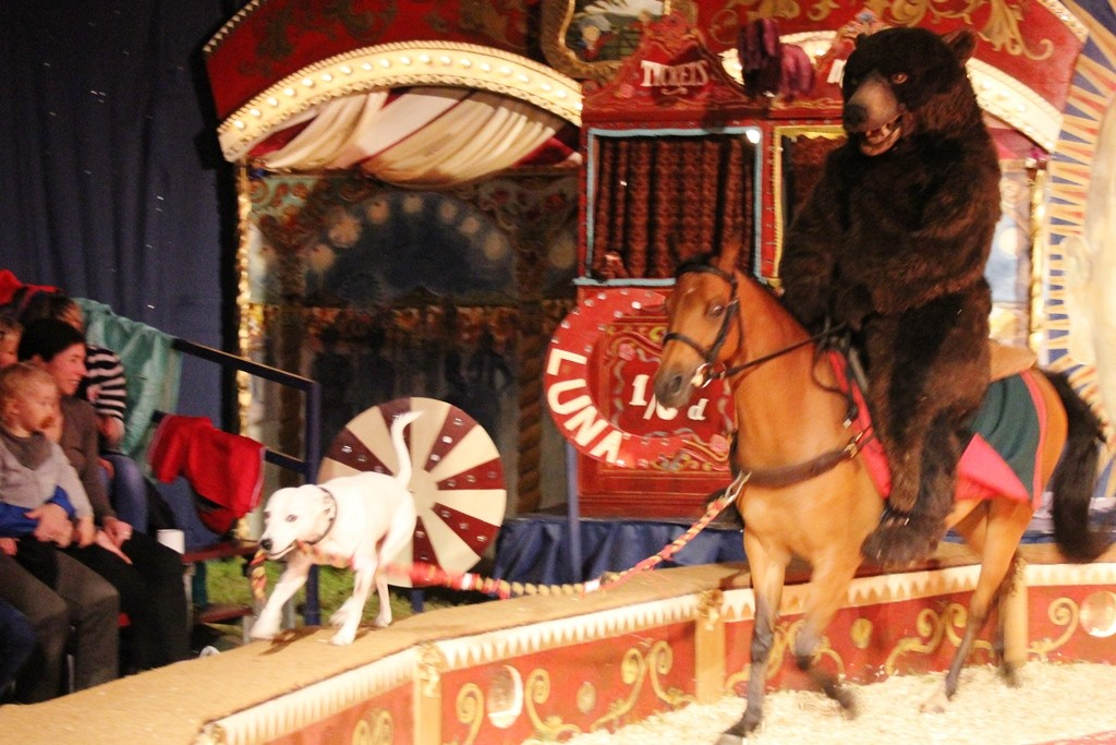 Giffords Circus - copyright: www.globalmousetravels.com