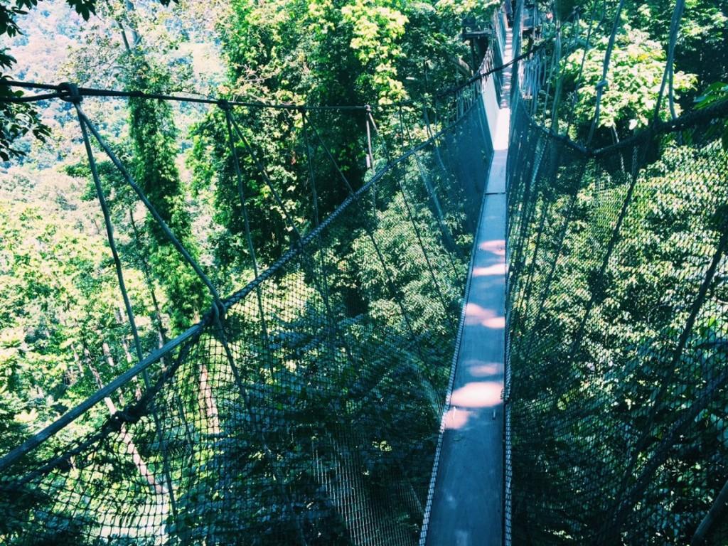 Canopy Walk, just outside of Kuala Lumpur - would you?!