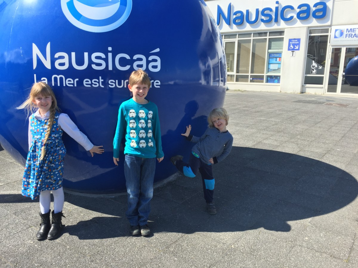 Nausicaa Aquarium, Boulogne, France - copyright: www.globalmousetravels.com