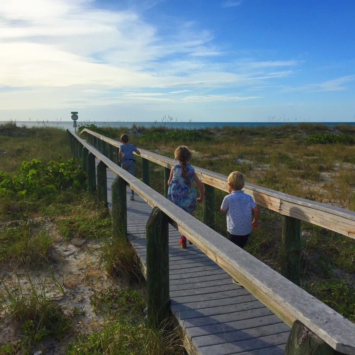 10 of the best day trips from Orlando, Florida: Go shell hunting on Pass-A-Grille beach, St Petersburg - copyright: www.globalmousetravels.com
