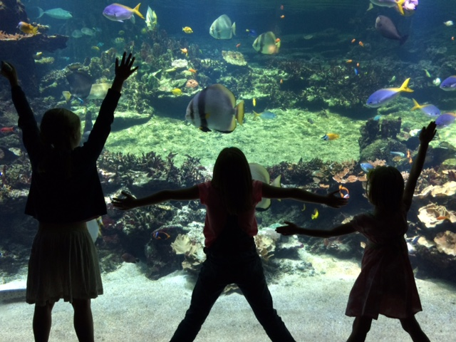 A family weekend in Calais and the Cote d'Opal - a perfect Northern France holiday - copyright: www.globalmousetravels.com